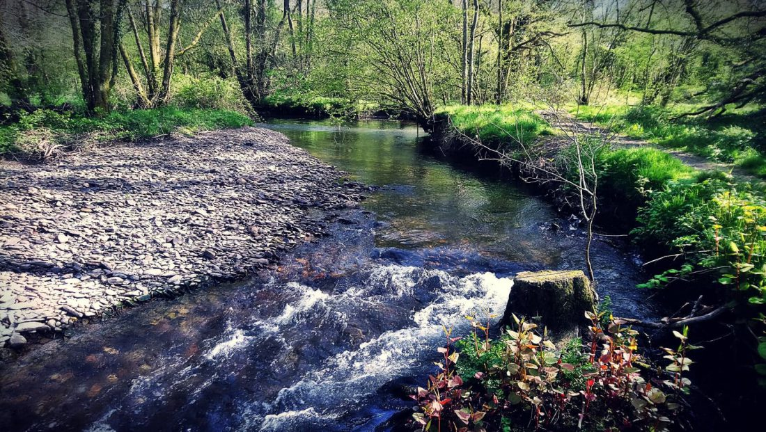 Stream and Woods Riverside Camping & Caravan Park, South Molton