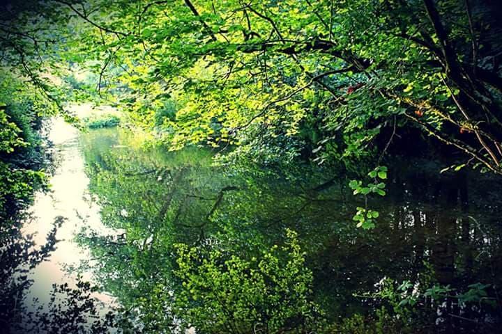 Lake at Riverside Camping Park, South Molton